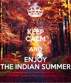 Keep Calm and enjoy the Indian summer Keep Calm Posters, Keep Calm Quotes, Welcome November, Keep Clam, Autumnal Equinox, Quotes About Everything, Summer Quotes, Indian Summer, Summer Pictures
