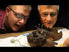 Milking the WORLD'S MOST VENOMOUS FISH! - Smarter Every Day 117 Published on Jun 26, 2014 The Stonefish is the World's most venomous fish. We milked it.