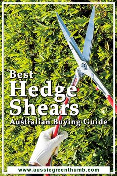 I've put together a list of the best hedge shears on the market as well as tips and advice on these tools to help you find a product that works well, is durable and has all the features needed to make gardening simple.#besthedgeshears Sustainable Gardening, Gardening Tools, Vegetable Gardening, Container Gardening, Trimming Hedges, Privacy Hedge, Garden Hedges, Grow Your Own Food, New Growth