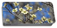 Dogwood Flower Portable Battery Charger featuring the photograph Dogwood In Bloom by Cynthia Guinn