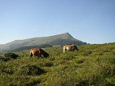 Pyrénées — Wikipédia  La RHUNE - Montagne sacrée du Peuple Basque - Pyrénées Atlantiques