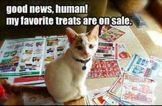 Good news human. My favorite treats are on sale!