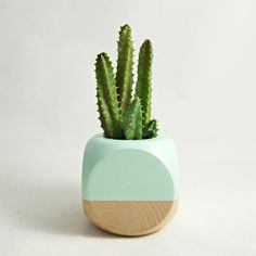 Geometric Succulent Cactus Planter // Mint Wood by seaandasters
