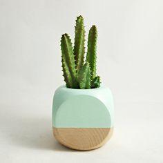 Geometric Succulent Cactus Planter // Mint Wood by seaandasters