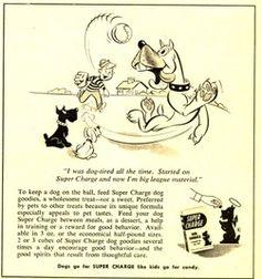1950's Dog Treat Ad