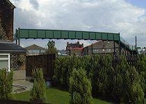 The Monkey Bridge