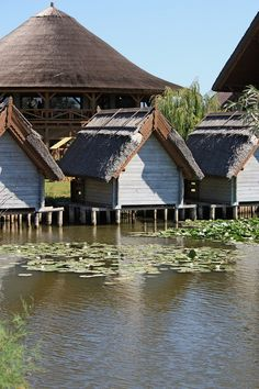 Danube Delta, Romanien More Places To See, Places Ive Been, Danube Delta, Visit Romania, Tourist Places, Black Sea, Story Inspiration, Bulgaria, Delicious Food