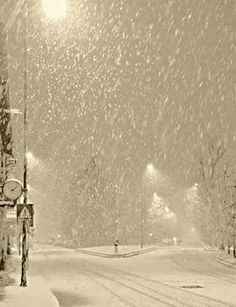 let it snow .let it snow.let it snow. - tüdelü , let it snow .let it snow.let it snow. let it snow .let it snow.let it s Winter Szenen, Winter Magic, Winter White, Winter Photography, Nature Photography, Snowy Day, Snow Scenes, Winter Beauty, Let It Snow