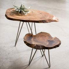 These could be a good option for the upstairs living room for extra settin' space- Live edge coffee table | Forma Living