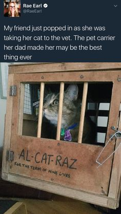 Pet carrying prison - Album on Imgur