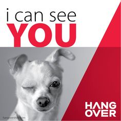 I can see you #hangover #hangovershotz http://hangovershotz.com