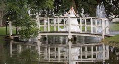 #66: Environmental Bridal Image #bpphototop100