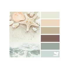 design seeds | search | for all who ♥ color ❤ liked on Polyvore featuring colors, design seeds, color palettes, backgrounds and beach