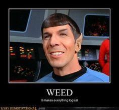 Star Trek Into Dankness Movie Memes, Funny Memes, Very Demotivational, Star Trek Tv, Weed Memes, Star Trek Original, Star Trek Universe, Smoking Weed, Hippies