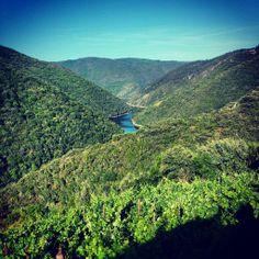 El río #Sil en la #RibeiraSacra #Ourense #Lugo #Spain by @1alex_lopez via Twitter