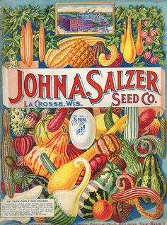 Gorgeous vintage seeds poster.