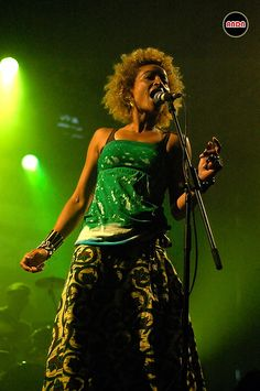 Stereo MCs, 2006