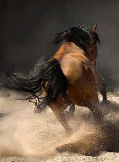 Amazing photography work