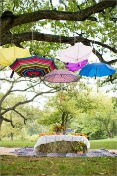 Umbrella picnic