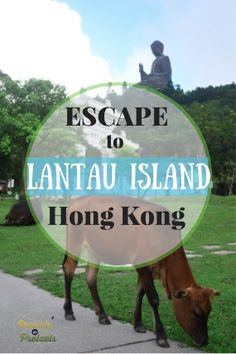 Things to do in Hong Kong: Escape to Lantau Island! - Peanuts or Pretzels Travel #HongKong #Lantau #China #Travel