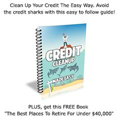 Credit Cleanup Made Easy