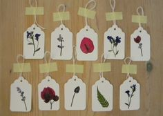Pressed flower place cards