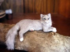 Linda Fisher - hand sculpted and furred cat
