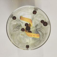 Gin & Tonic Granishes : Gin Foundry 8