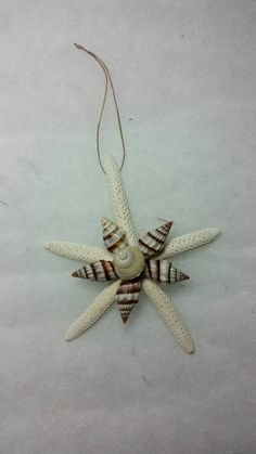 Hey, I found this really awesome Etsy listing at https://www.etsy.com/listing/207438373/starfish-christmas-ornament-seashell