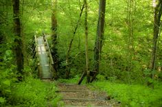 12 places in KY for outdoor adventure, like Fort Boonesborough State Park.