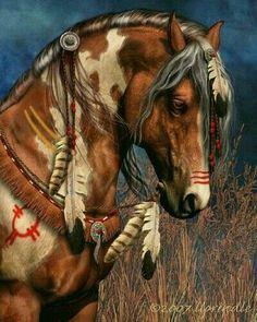 Indian paint war horse