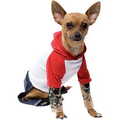 Tattoo Dog Pet Costume - Small * Be sure to check out this awesome product. (This is an affiliate link and I receive a commission for the sales) #PetDogs