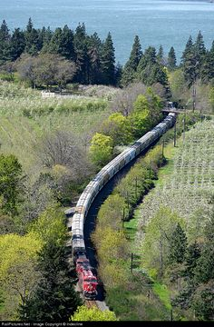 RailPictures.Net Photo: CP 8939 Canadian Pacific Railway GE ES44AC at Hood River, Oregon by Indecline