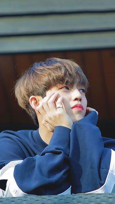 He is real? Woozi, Jeonghan, Wonwoo, Seungkwan, Seventeen Leader, Seventeen Album, Carat Seventeen, Dino Seventeen, Seventeen The8