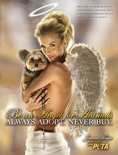 I do not support PETA's politics, but I do agree with the message of this poster. Joanna Krupa PETA ad promoting adopt -- don't buy