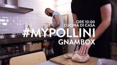 Pollini - Gnambox
