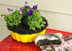 Turn an old cake pan into a fun yellow planter.
