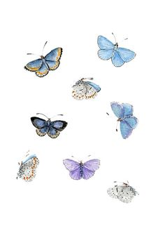 ORIGINAL Painting - Blue Butterflies (Watercolors Wall Art, Still Life) A5 on Etsy, $37.64 CAD