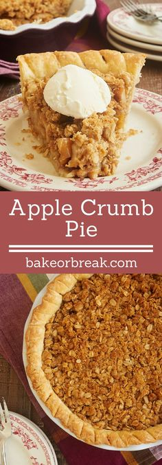Apple Crumb Pie combines sweet apples and a cinnamon crumb topping for an unforgettable dessert! - Bake or Break ~ http://www.bakeorbreak.com