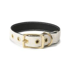 DOG & CO. | LOVE thy BEAST | Canvas Collar in White + Black
