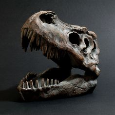Give your dull work space a little prehistoric charm using this mini T-Rex skull. Measuring roughly x inches, this scaled down version is skillfully crafted from resin and given an elegant antique finish to provide a frighteningly realistic appearance. Good Birthday Presents, Jackdaw, Tyrannosaurus Rex, Original Gifts, Gadget Gifts, Cool Tech, Animal Skulls, Unusual Gifts, T Rex