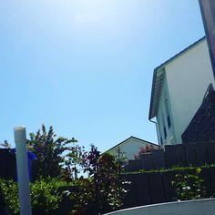Ist das schön  endlich mal wieder strahlender Sonnenschein  einfach perfekt zum draußen sitzen  gleich setzt ich mich auch ein meine kikki und mache ein paar listen  #planner #plannergirl #planneraddict #plannernerd #plannercommunity #whrite #filofax #filofaxing #filofaxaddict #filofaxgirl #filofaxnerd #filofaxlove #filofaxdeutschland #kikkik #black #leather #sun #sunnyday #fun by love_kikkik