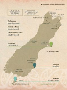 Bill ✔️ Tribes of the South Island From NZTE's Māori Cultural Kit for people wanting to do business with Māori organisations, a map showing tribal boundaries of New Zealand's Māori iwi. Maori Words, Map Of New Zealand, Maori Symbols, Maori Tribe, Nz History, Maori Patterns, Maori People, Polynesian Art, Maori Designs