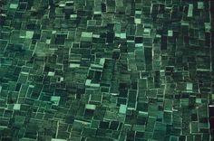 La terre vue du ciel par Yann-Arthus Bertrand - Culture d'algues à Bali en Indonésie.