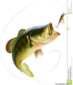 Largemouth Bass Jumping Drawing | Amazing Wallpapers