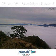 Paseo por las nubes #Xichú #guanajuato