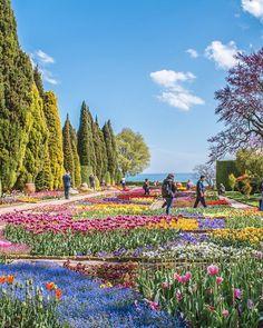 Care e cea mai frumoasă grădină botanică pe care ați văzut-o? 💐🌺 Să ne alinăm puțin dorul de primăvară zic ☺️ Mai, Vineyard, Golf Courses, Mountains, Nature, Travel, Outdoor, Instagram, Outdoors