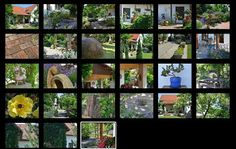 Kouzlo domova: Inspirace zahrada