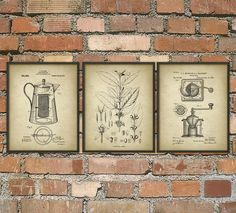 Coffee Wall Art Poster Set of 3 Coffee Plant by QuantumPrints