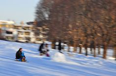 Sledding in Frogner, Oslo - Norway via: Behind The Lens Lukey #travel #photography
